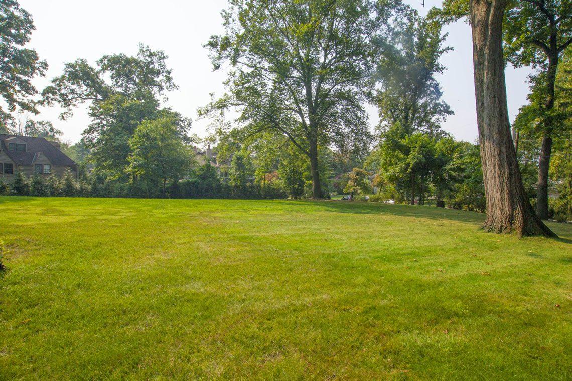 22 – 30 Delwick Lane – Backyard